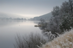 Frosty-morning_264