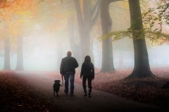 walking-in-the-autumn-mist-254